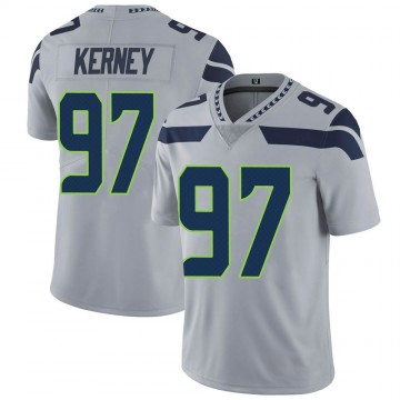 Youth Nike Seattle Seahawks Patrick Kerney Gray Alternate Vapor Untouchable Jersey - Limited